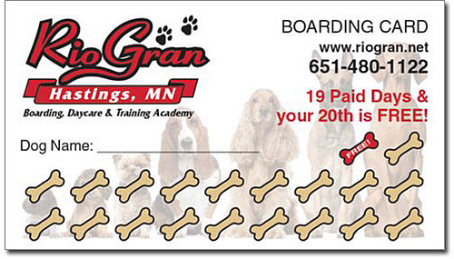 Rio Rewards - rio Gran Training and boarding